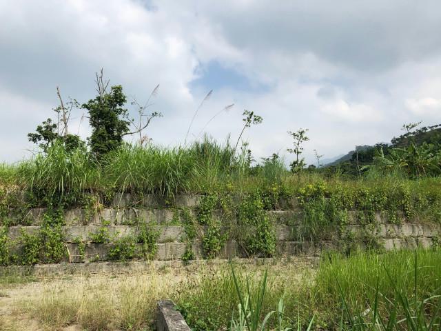 台南溫泉區土地,台南市楠西區龜丹段35-1、35-2等地號